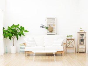 ニトリのソファは引き取りできる?買取可能な種類や買取事例を解説