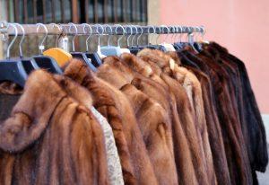 毛皮の製品は高価買取が期待できる!?便利な宅配買取を利用してみよう!